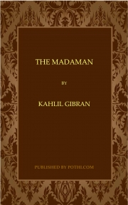 The Madman (eBook)