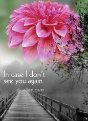 In Case I Don't See You Again