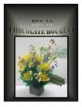 BEN 10 CHOCOLATE BOUQUET (eBook)