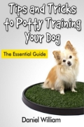 Tips and Tricks to Potty Training Your Dog  (eBook)