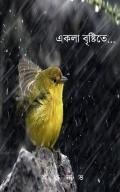 একলা বৃষ্টিতে... (Ekla Brishti te)