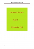 Psychedelic Journey (Part III) (e-book)