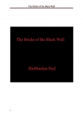 The Bricks of the Black Wall