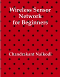 Wireless Sensor Network for Beginners