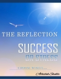 "The Reflection ""Success or Stress"" Choose Wisely..."