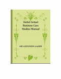 Siebel Actual Business Case Studies Manual