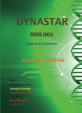 Dynastar Biology Figures and Structures