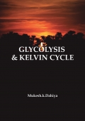 GLYCOLYSIS & KELVIN cycle