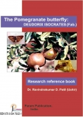 The Pomegranate Butterfly: Deudorix isocrates (feb.)