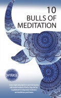 10 Bulls of Meditation