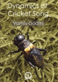 Dynamics of Cricket Song
