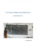 Curriculum Pedagogy and assignments at elementary level  (eBook)