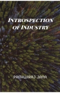 INTROSPECTION OF INDUSTRY