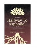 The Best of Halfway To Asphodel