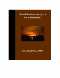 Siebel Business Analyst ( BA ) Blackbook (eBook)