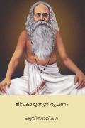 ജീവകാരുണ്യ നിരൂപണം ( Jivakarunya Nirupanam ) (Malayalam Edition)