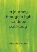 A journey through a light studded pathway
