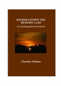 Journey Down The Memory Lane (eBook)