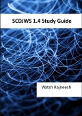 SCDJWS 1.4 Study Guide